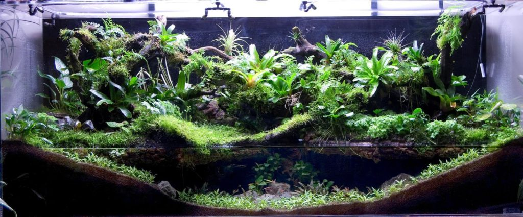 Paludarium from the side