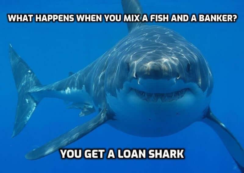 A clever shark fish pun
